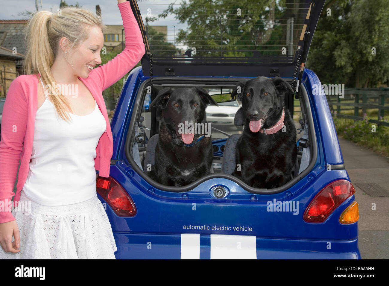 Young woman putting dogs in electric car - Stock Image