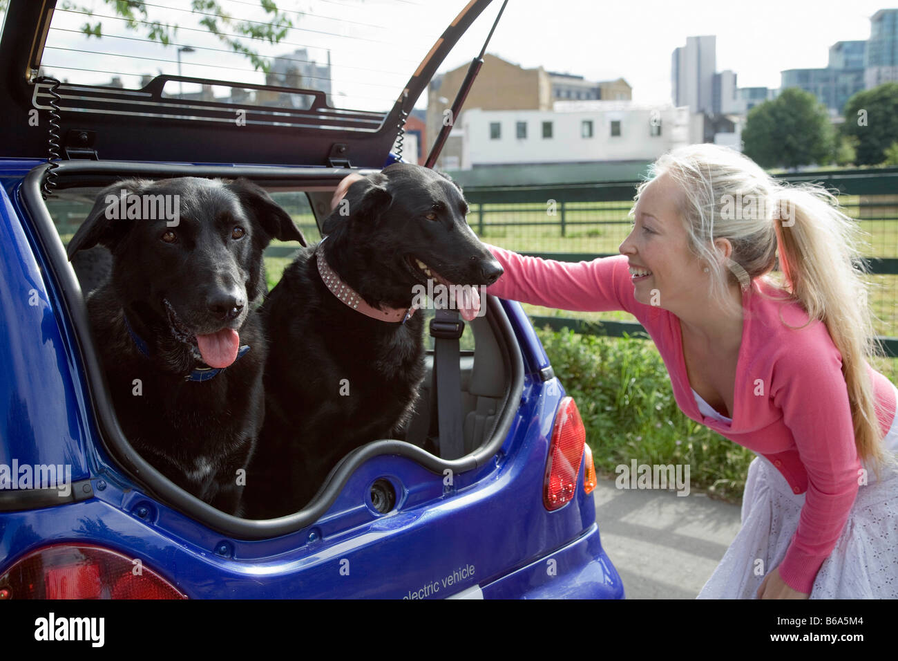 Young woman patting dogs in electric car - Stock Image