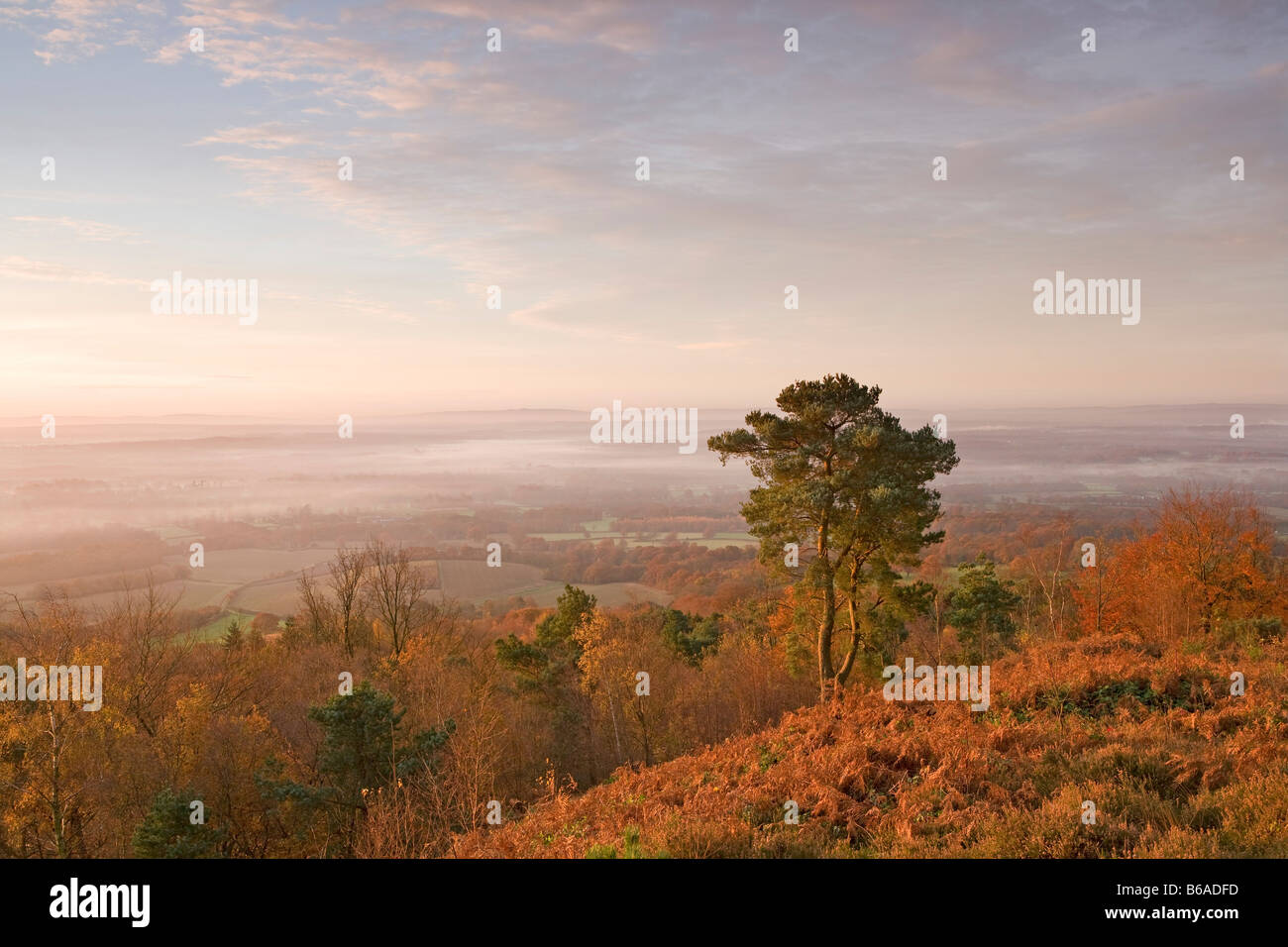 Early morning [view from Leith Hill] [North Downs] [Surrey Hills] autumn - Stock Image