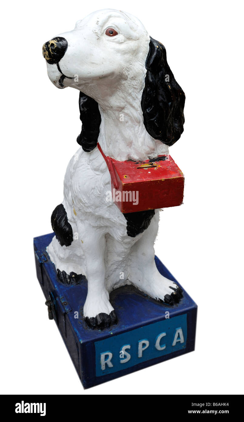 RSPCA Charity Collection Box - Stock Image