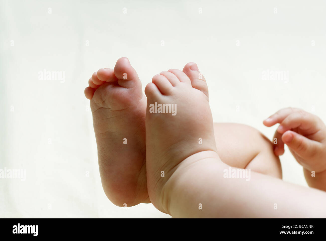 Close-up of baby's feet - Stock Image