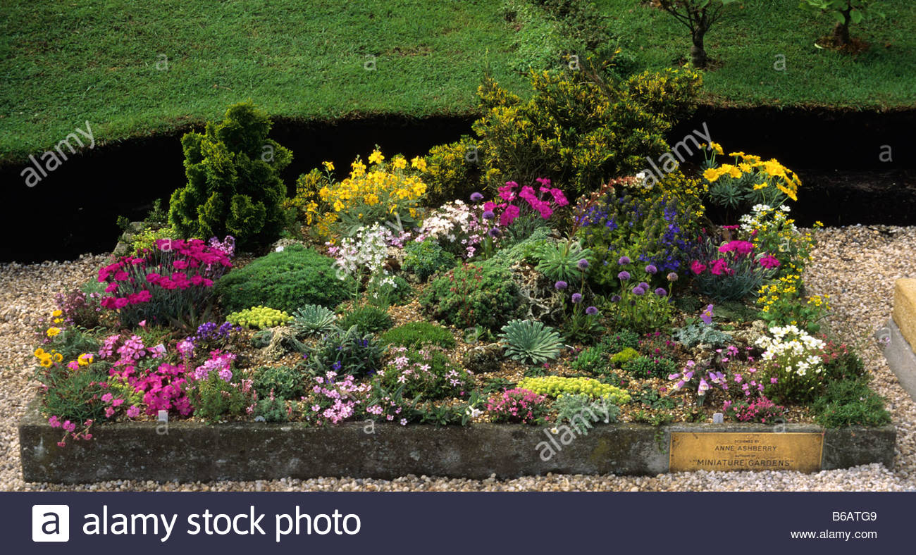 Chelsea FS 1993 Miniature Garden Company miniature garden with alpines and bonsai conifers - Stock Image