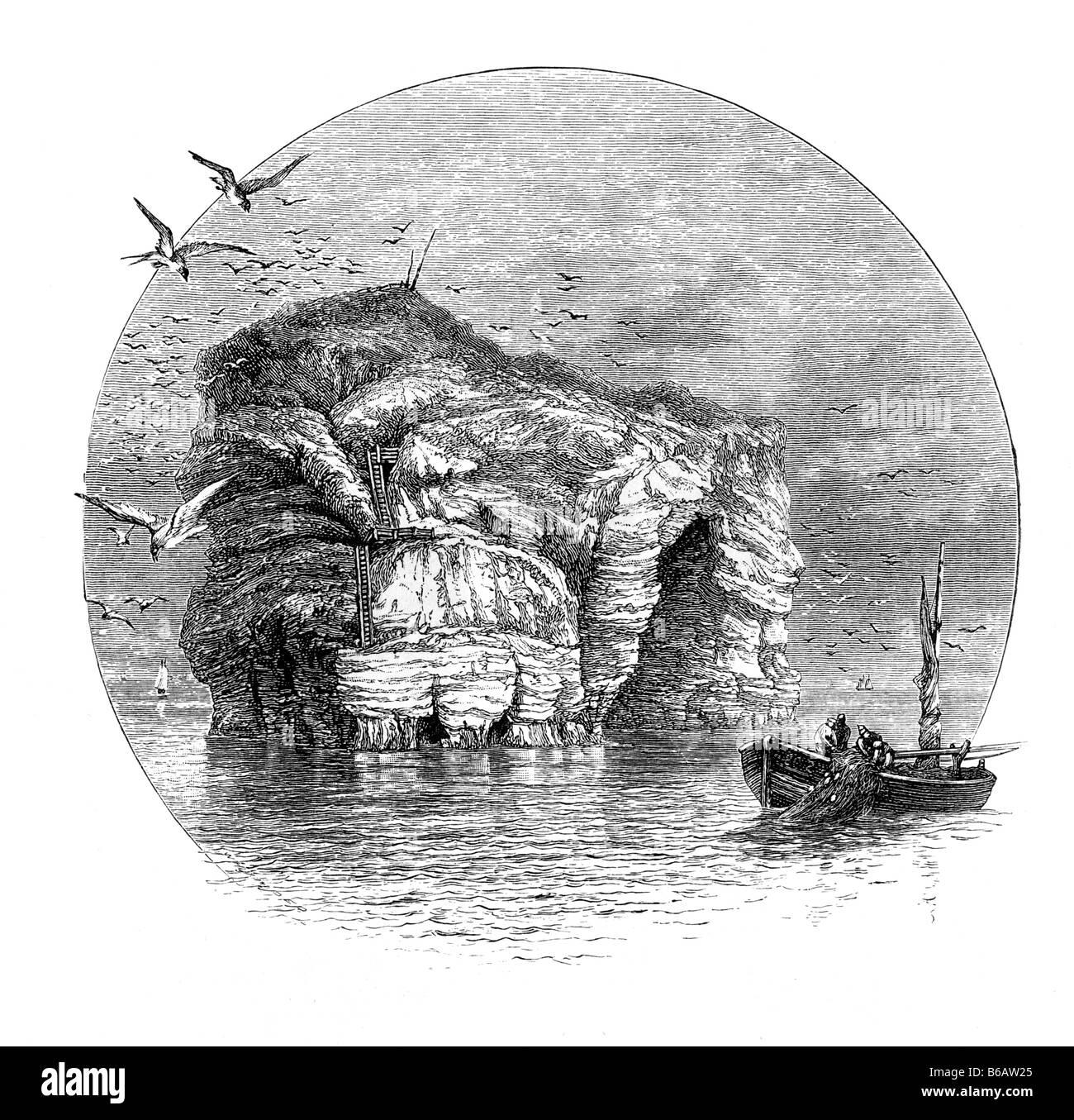 The Marsden Rock Near South Shields 19th Century Illustration - Stock Image