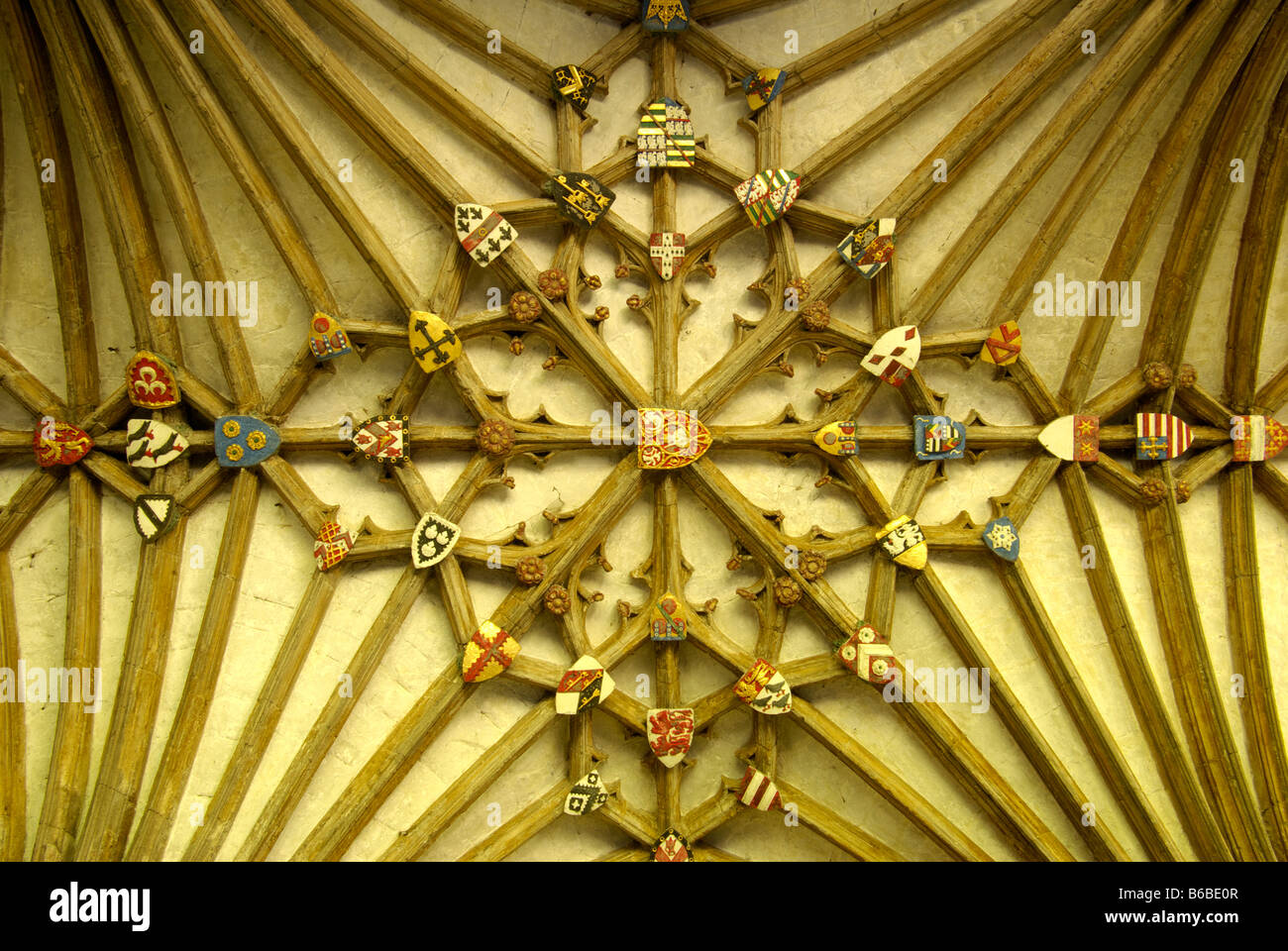 lierne vaulting in the cloister of canterbury cathedral - Stock Image
