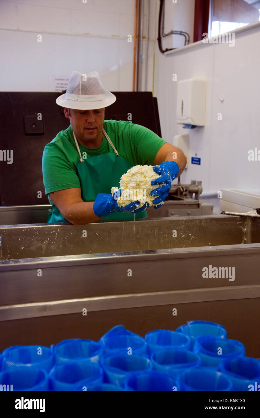 Making Cheese at Laceys The Station Richmond Yorkshire - Stock Image