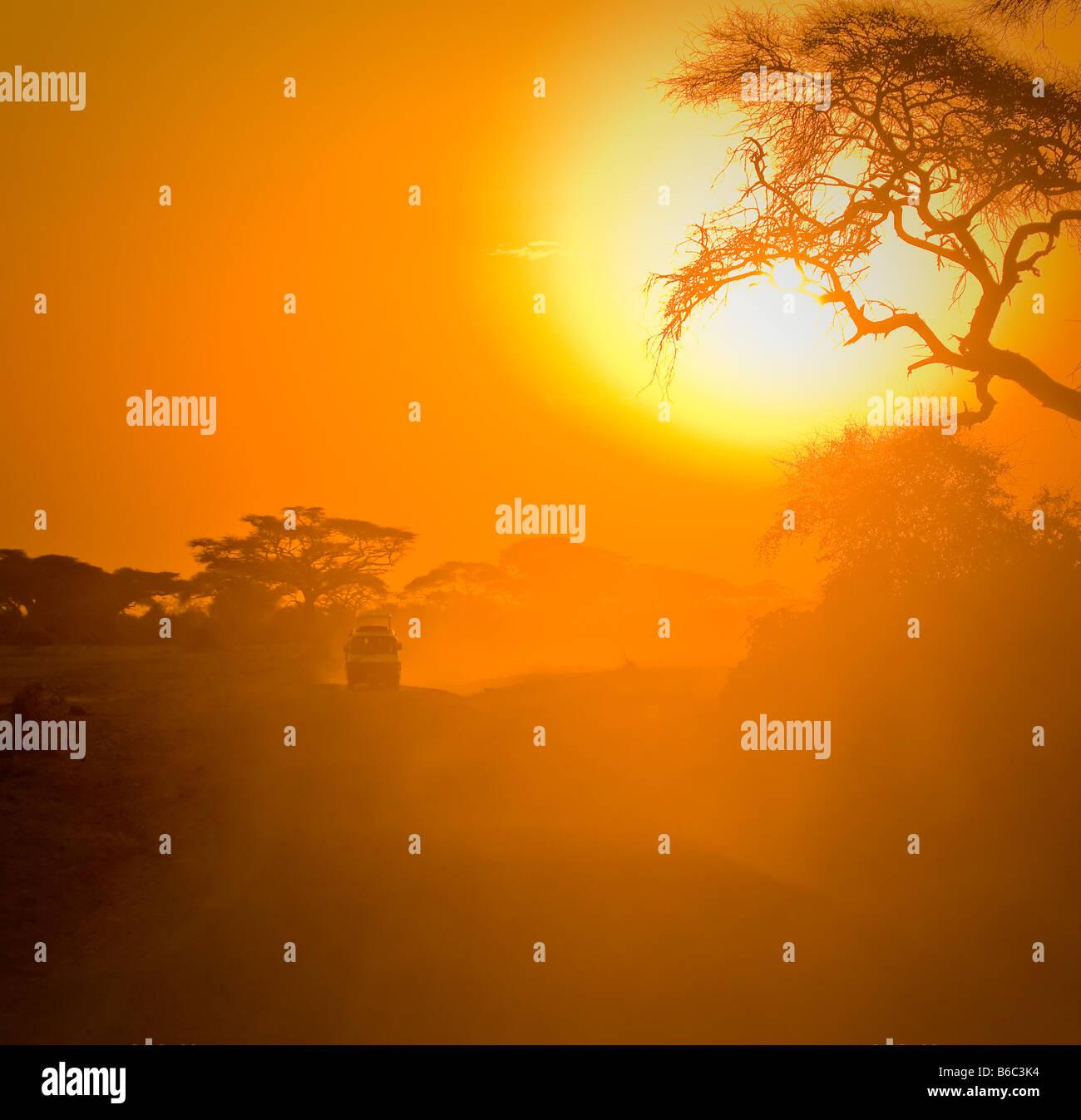 safari jeep driving through savannah in the sunset Stock Photo