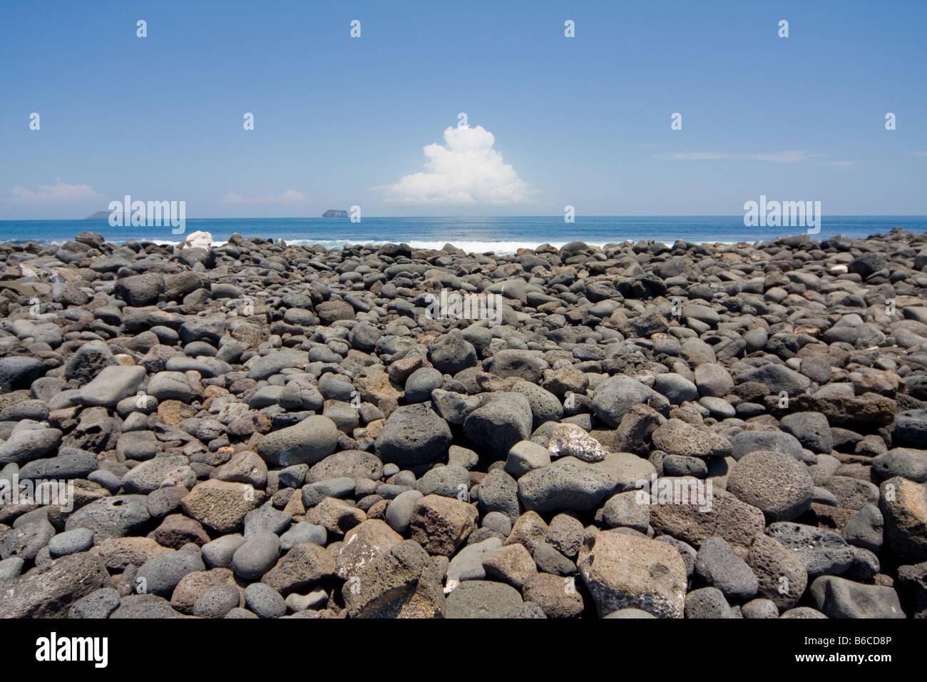 North Seymour Island Galapagos Ecuador - Stock Image