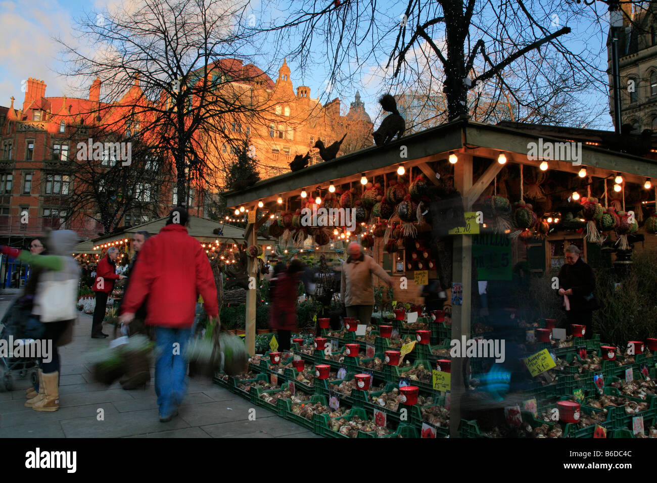 sunset over st alberts square christmas market stock image - Christmas Market Dc