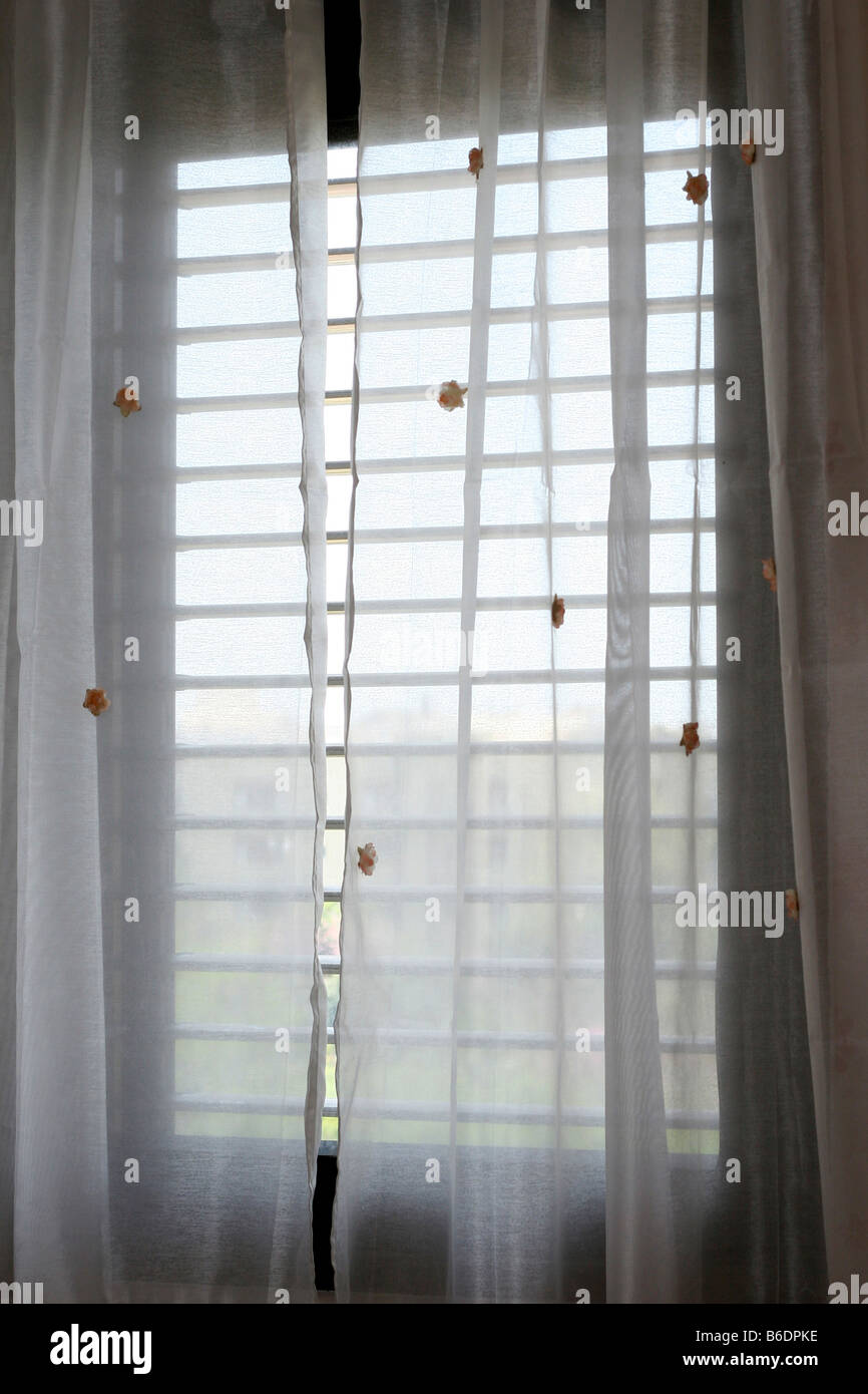 white Curtains on a window Stock Photo
