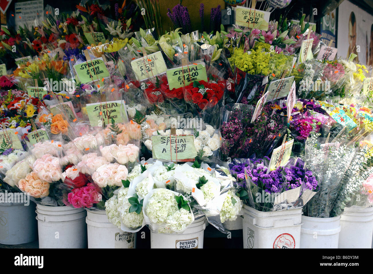 Urban Setting Of An Outdoor Flower Market Featuring A Variety Of