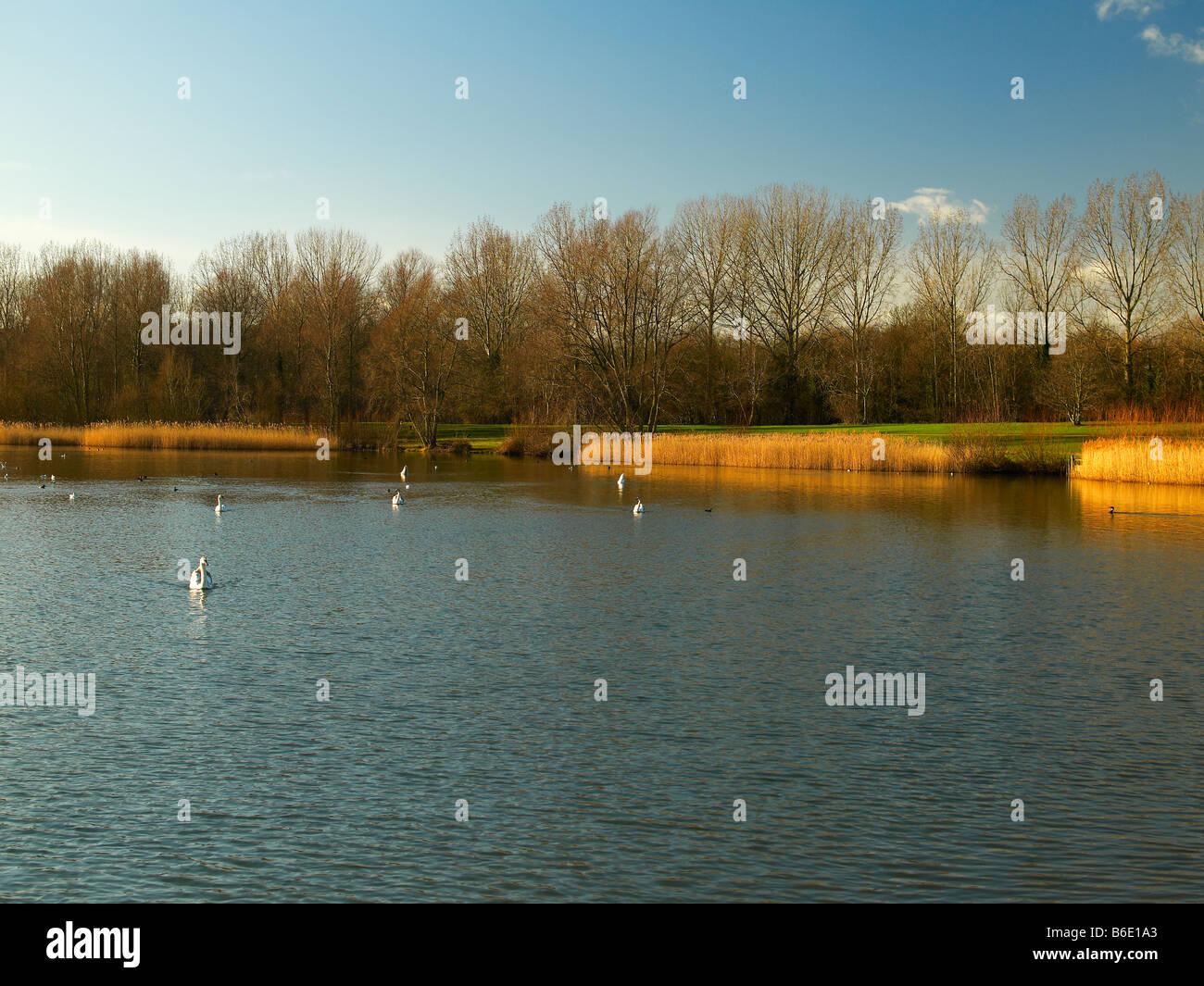 Willen Lake, Milton Keynes, Midland, UK - Stock Image