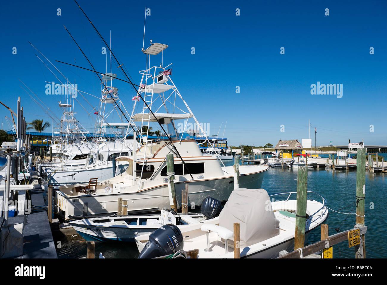Fishing boats for charter at Whale Harbour, Upper Matecumbe Key, Islamorada, Florida Keys, USA - Stock Image