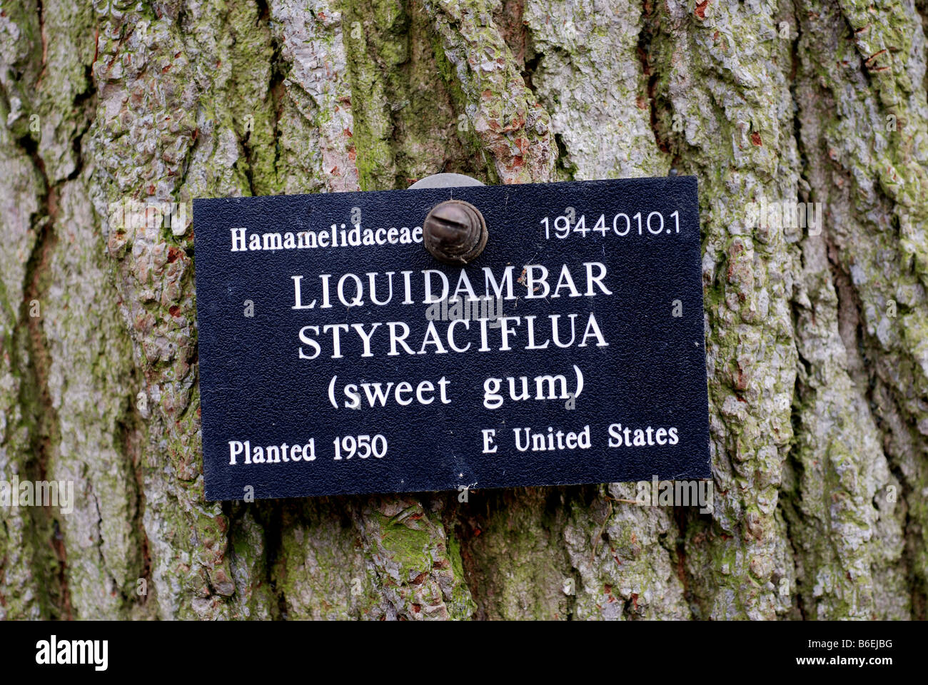 It is an image of Sly Botanical Garden Plant Labels