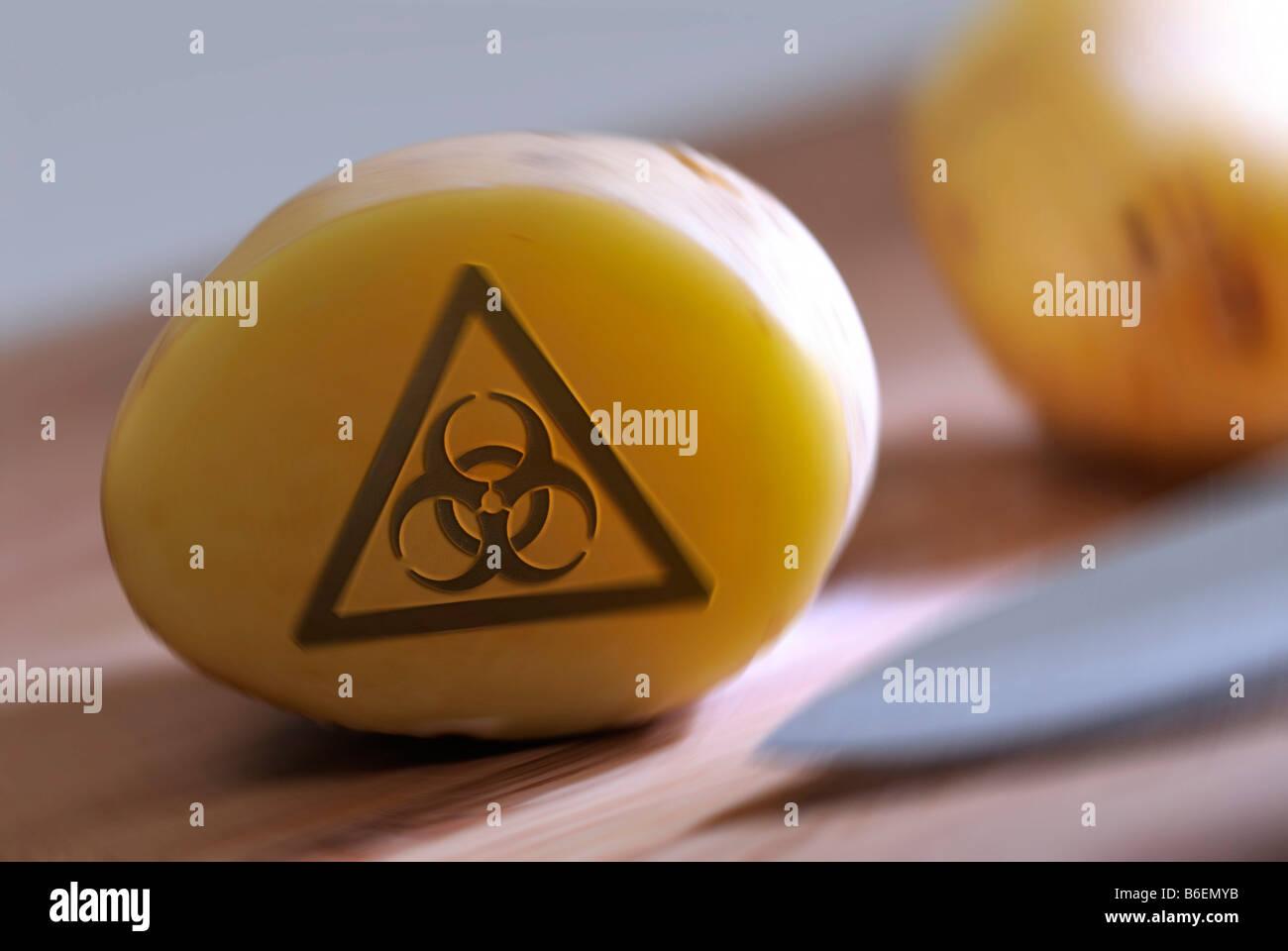 Sliced potato with a Bio-hazard symbol, symbolic photo for genetically modified potatoes - Stock Image