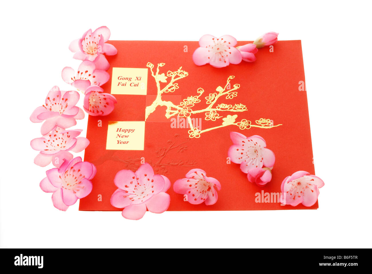 chinese new year greetings and plum blossom on white