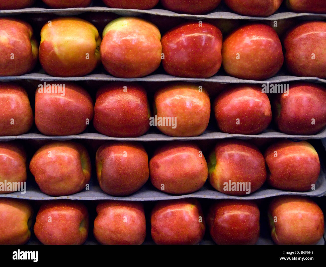 Stacked rows of Braeburn Apples in food market - Stock Image