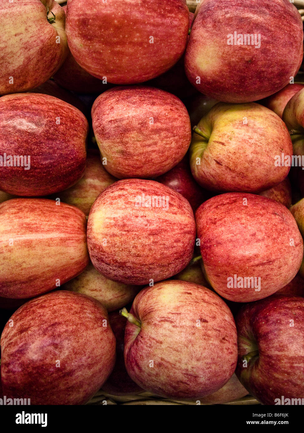 Pile of Gala Apples - Stock Image