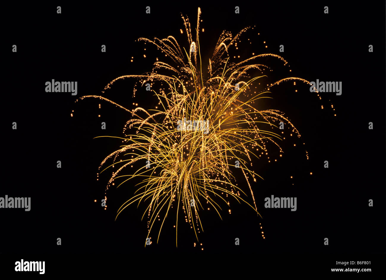 Firework - Stock Image