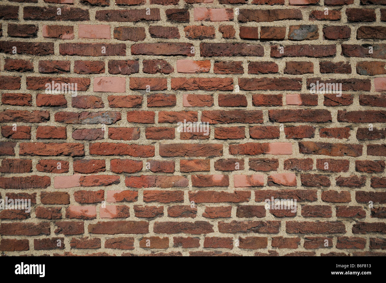 Old red brick wall - Stock Image