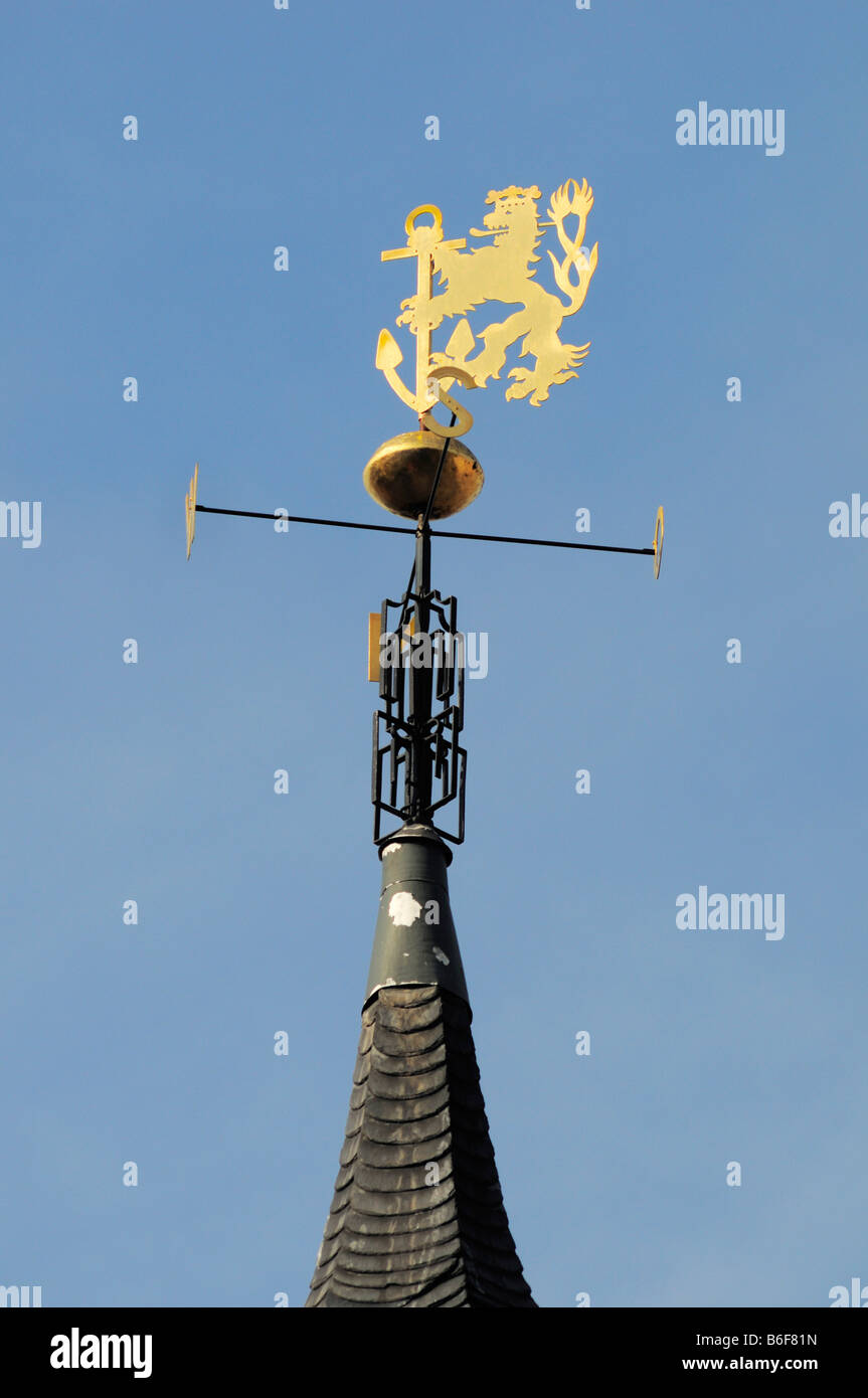 Lion weathervane with an ancor, crest, on the city hall, Duesseldorf, North Rhine-Westphalia, Germany, Europe Stock Photo