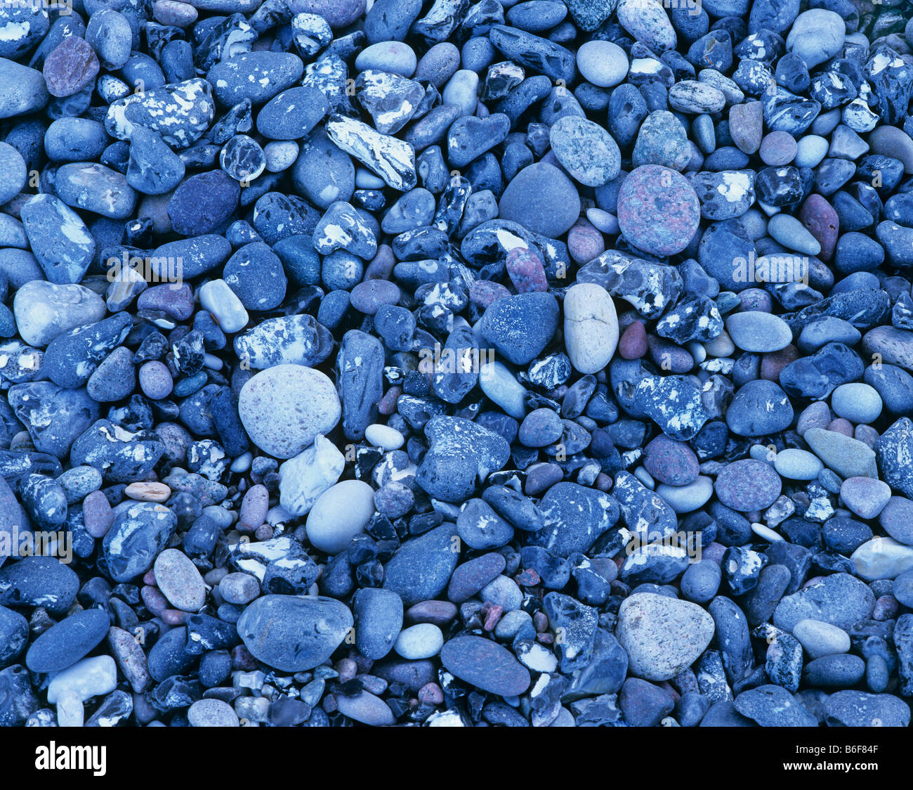 Bluish flint stones and pebbles from the Baltic Sea beach - Stock Image
