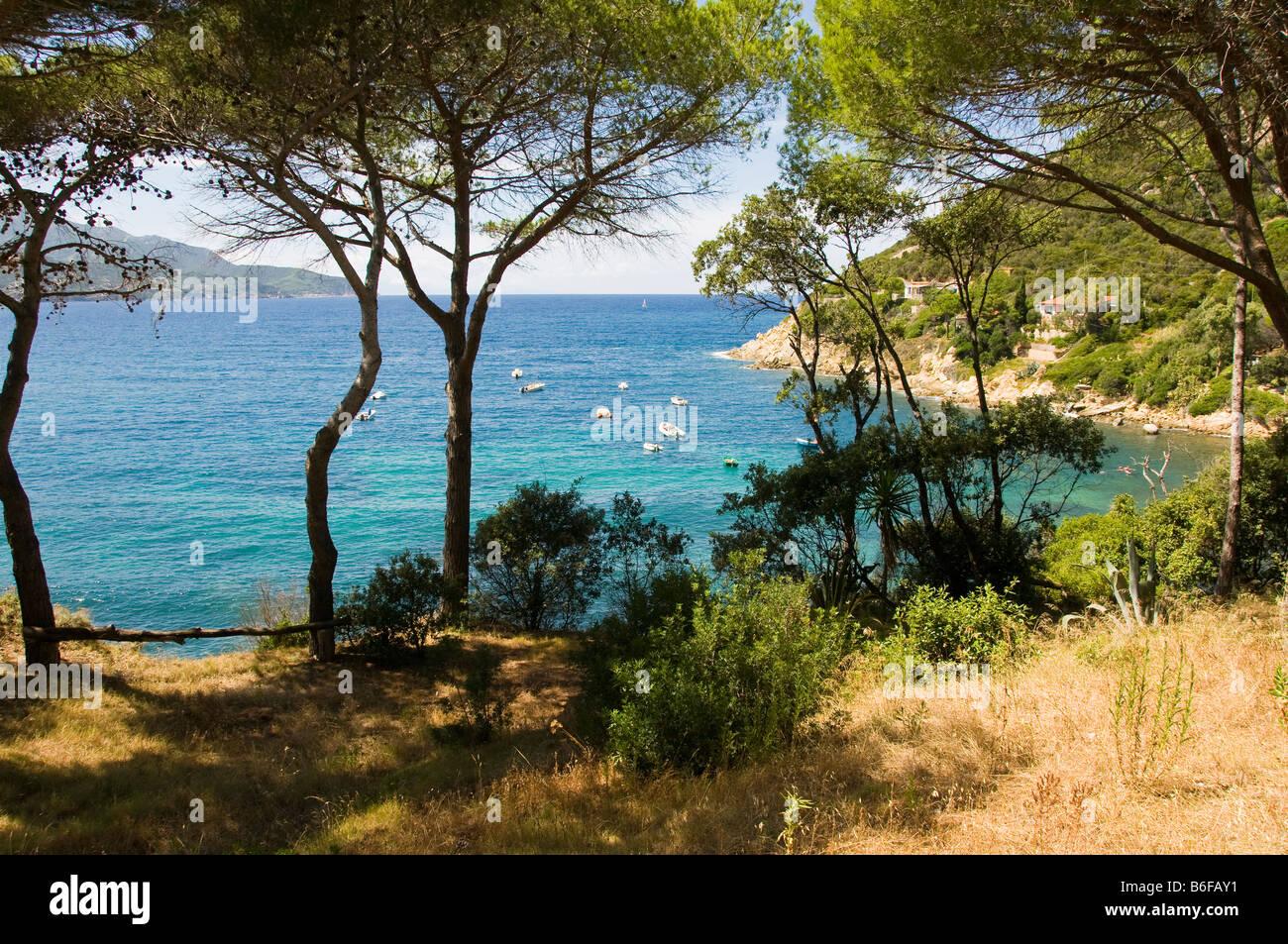 Elba island waterscape, Tuscany, Italy - Stock Image