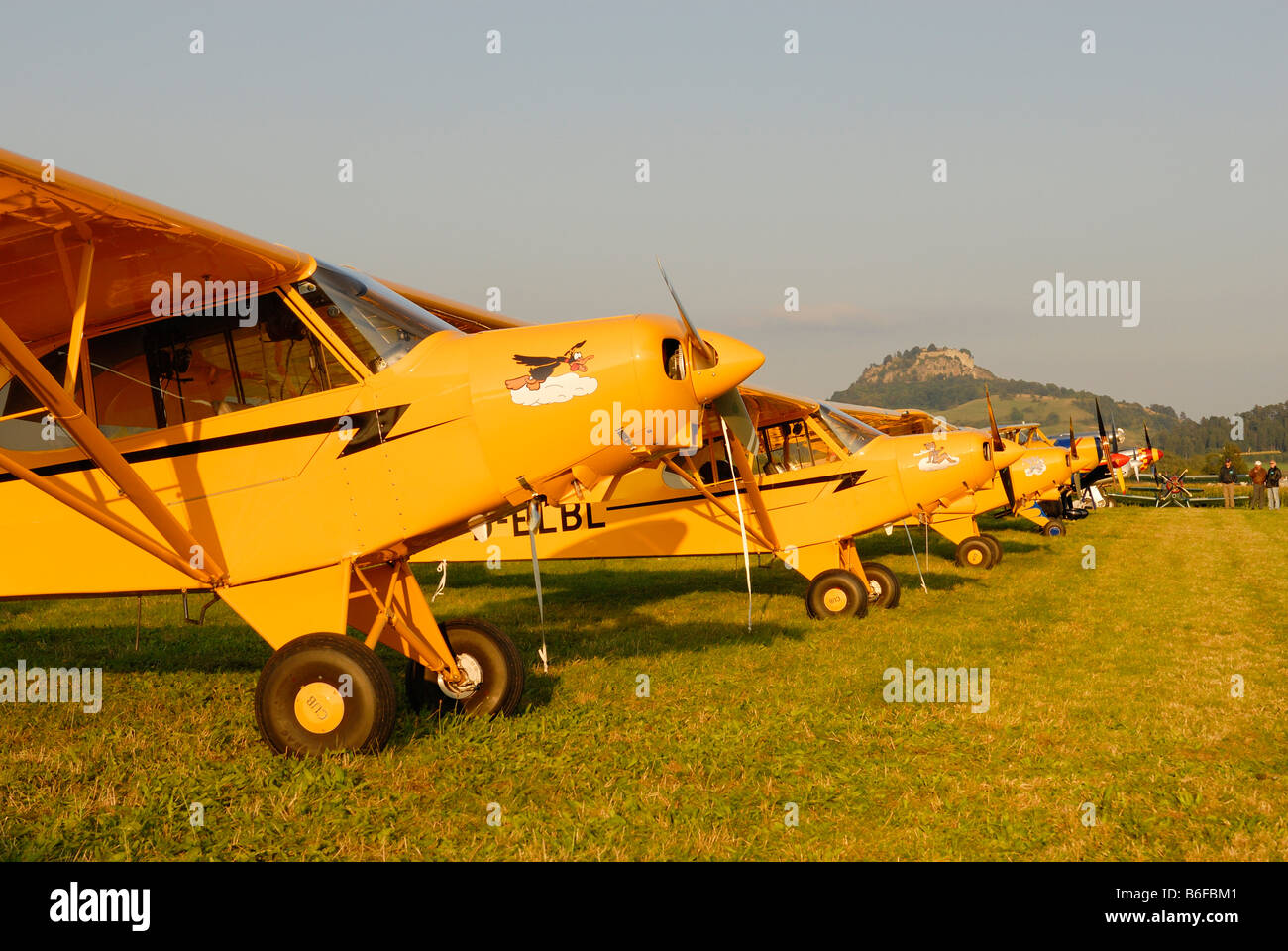 Propeller-driven aircraft parked in a row on a meadow, Flugtag Hilzingen 2008, Konstanz district, Baden-Wuerttemberg, - Stock Image