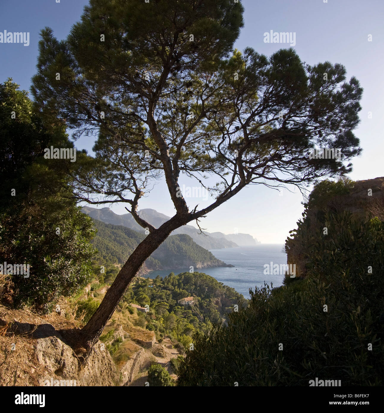 View from the sea near Torre del Verger, Majorca, Balearic Islands, Spain, Europe - Stock Image