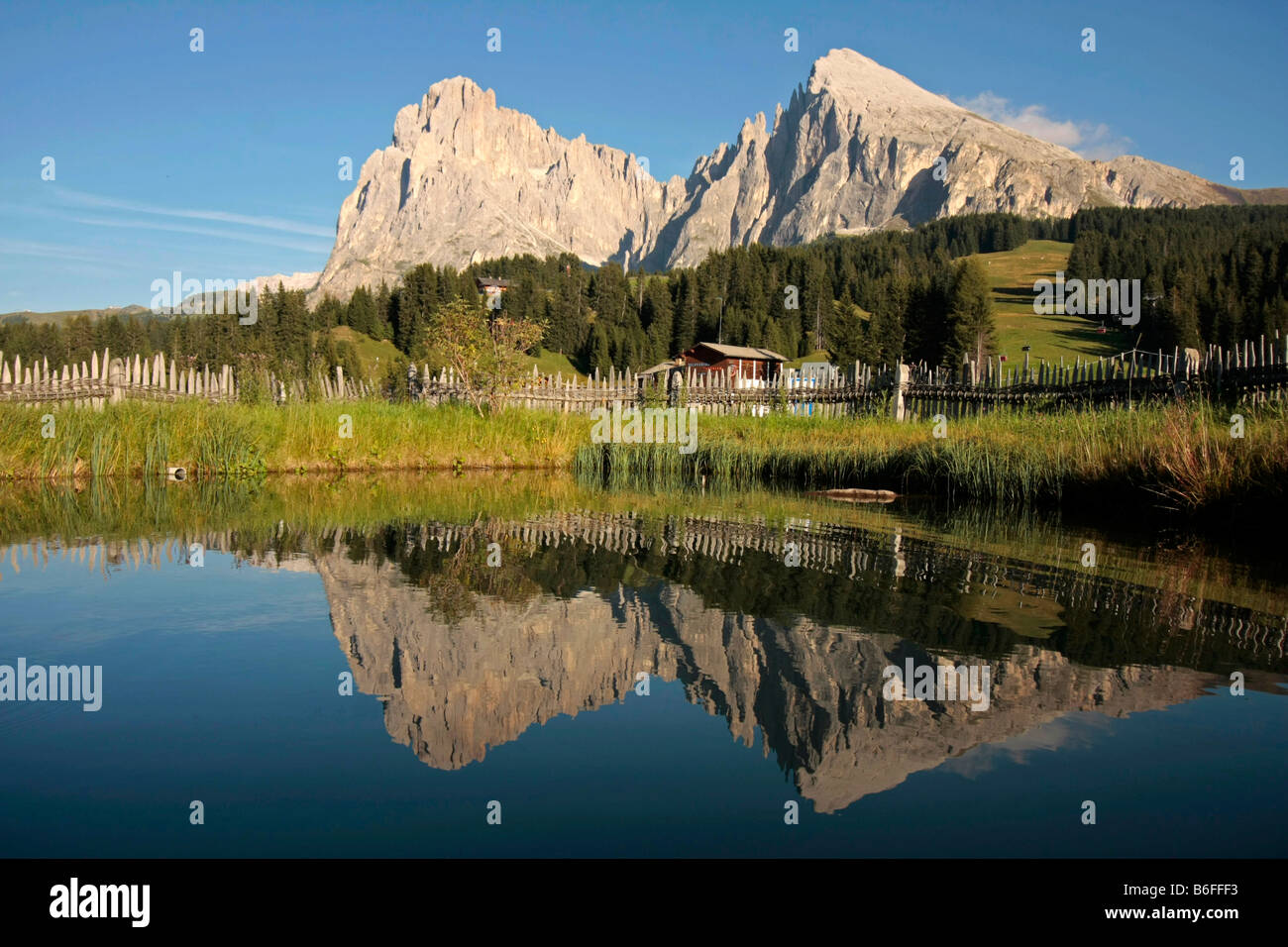 Long and Plattkofel summits of the alpine pasture Seiser Alm, Alpe di Siusi, in the Dolomites in summer, near Seis, - Stock Image