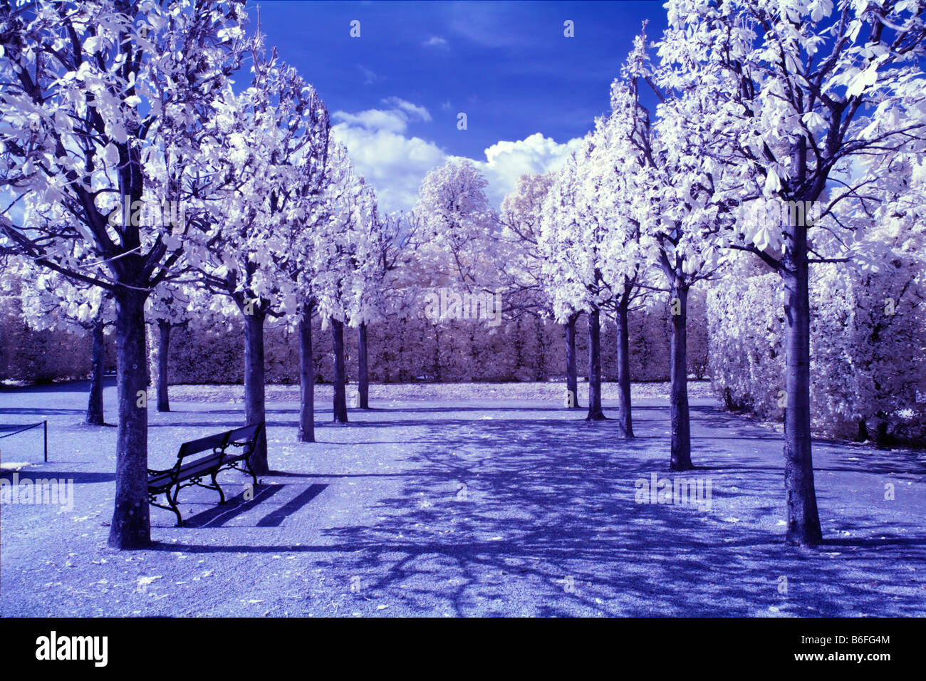 Schoenbrunn Palace gardens, infra-red colour photograph, Vienna, Austria, Europe - Stock Image