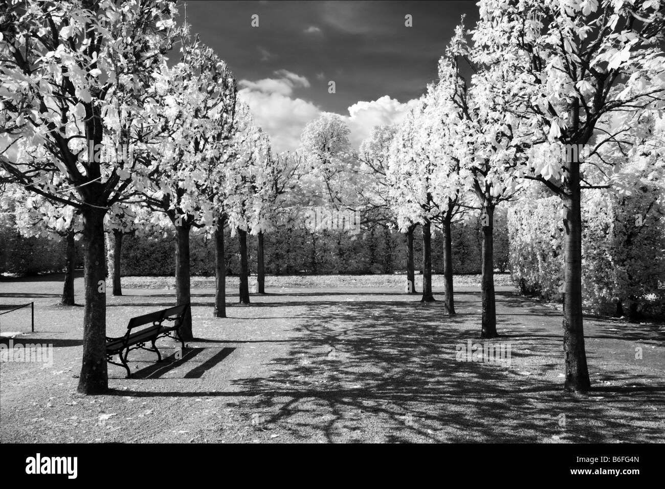 Schoenbrunn Palace gardens, infra-red black and white photograph, Vienna, Austria, Europe - Stock Image