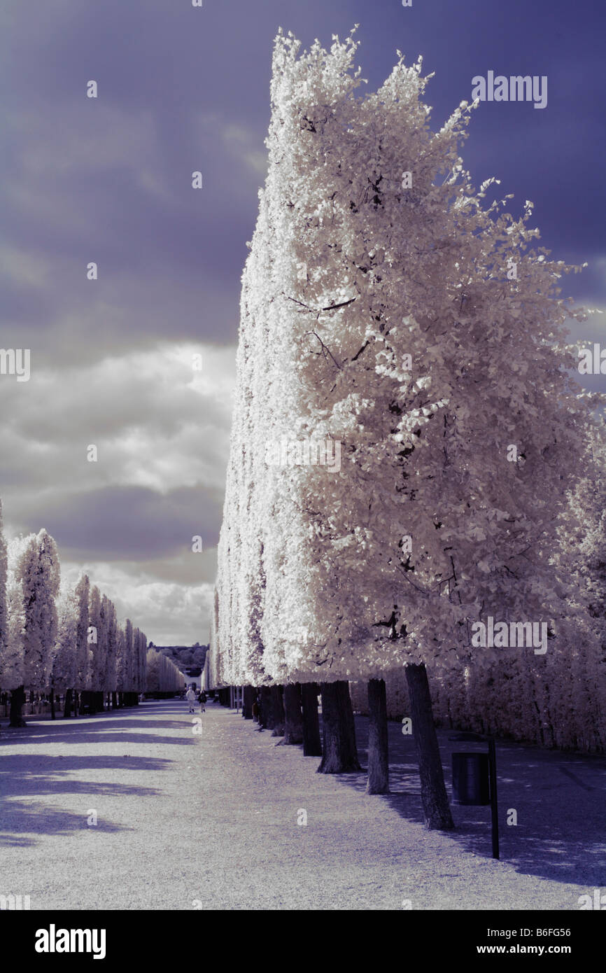 Schloss Schoenbrunn Palace, infrared color photo, Vienna, Austria, Europe - Stock Image
