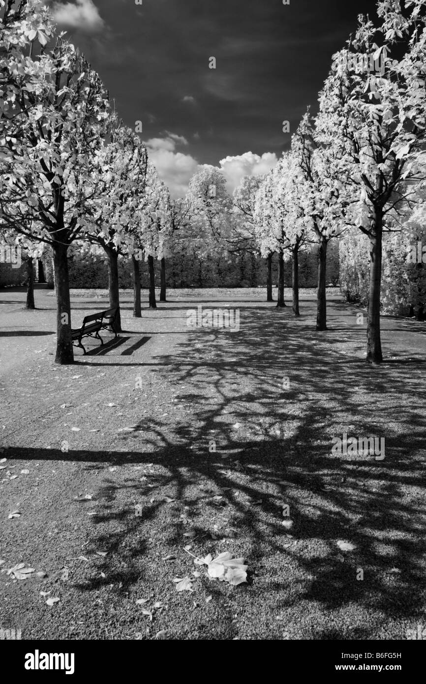 Schloss Schoenbrunn Palace, infrared black and white photo, Vienna, Austria, Europe - Stock Image