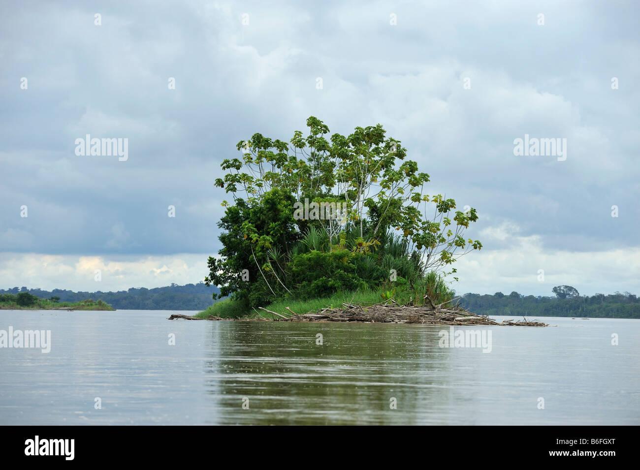 Island in the Rio Napo river near the city of El Coca, Ecuador, South America - Stock Image
