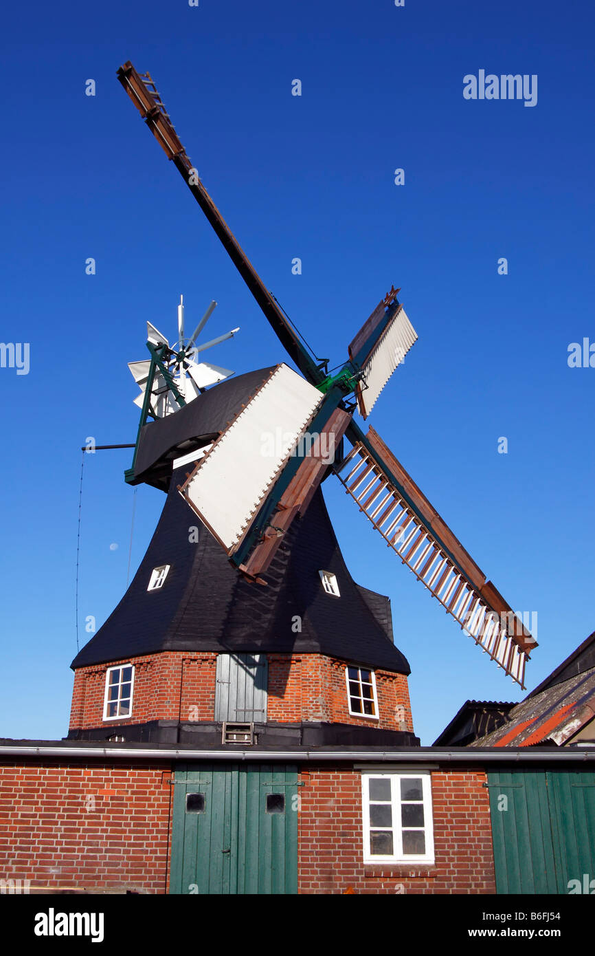 Goetzberg Mill, historic windmill, dutch style with venetian blind style wings and a wind rose, Goetzberg, Henstedt Stock Photo