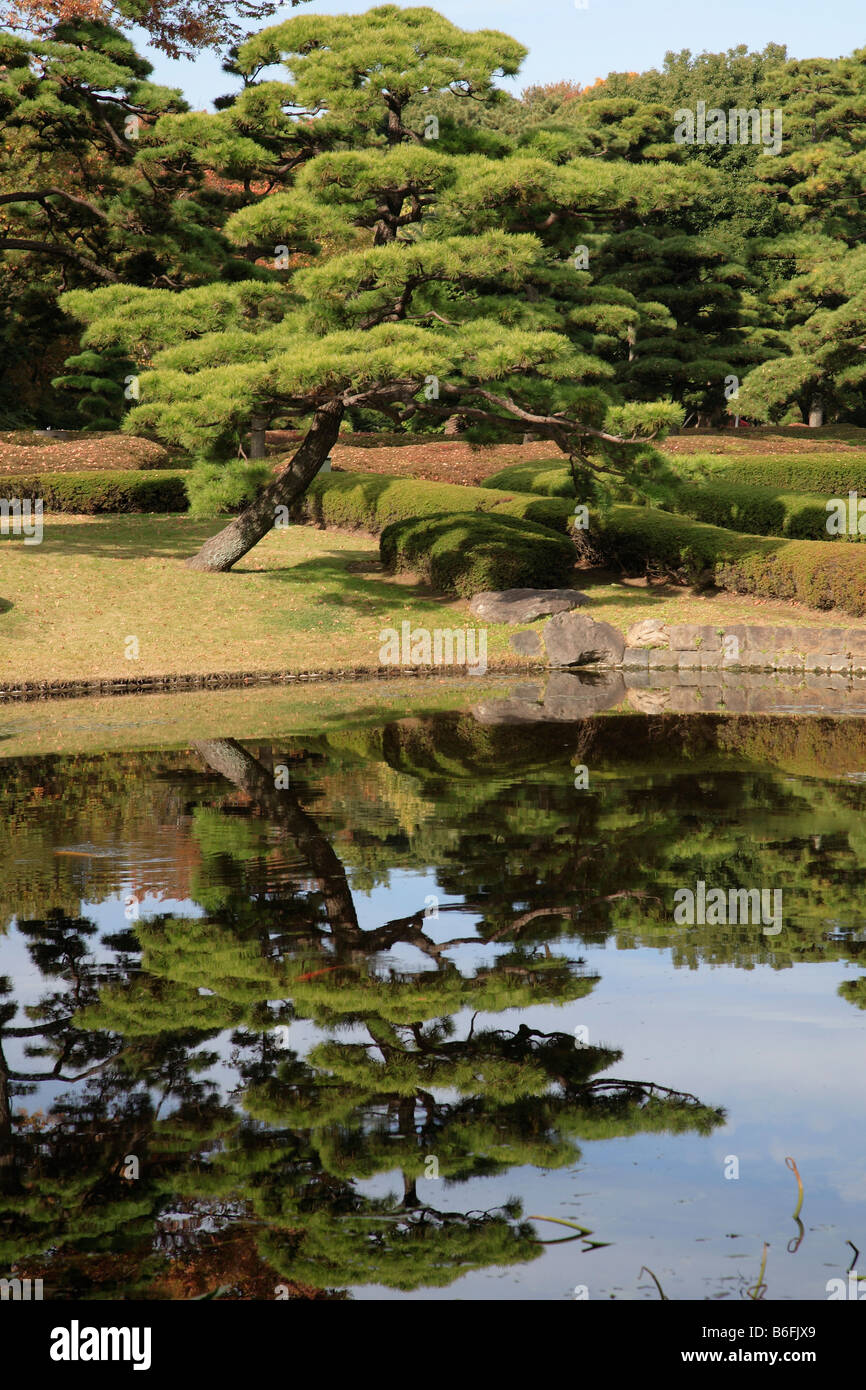 Japan Tokyo Imperial Palace East Garden Stock Photo: 21242433 - Alamy