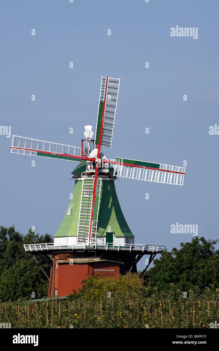 Historic old Venti Amica windmill, three storey typical dutch style, Twielenfleth, Altes Land area, Lower Saxony, - Stock Image