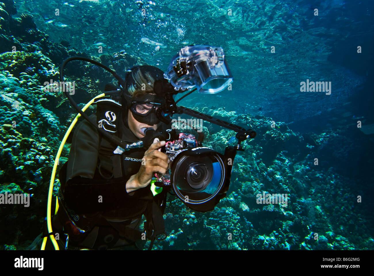 photographer diver scuba diving underwater under water camera reef riff at Marsa Nakara Marsa Alam camera flash - Stock Image
