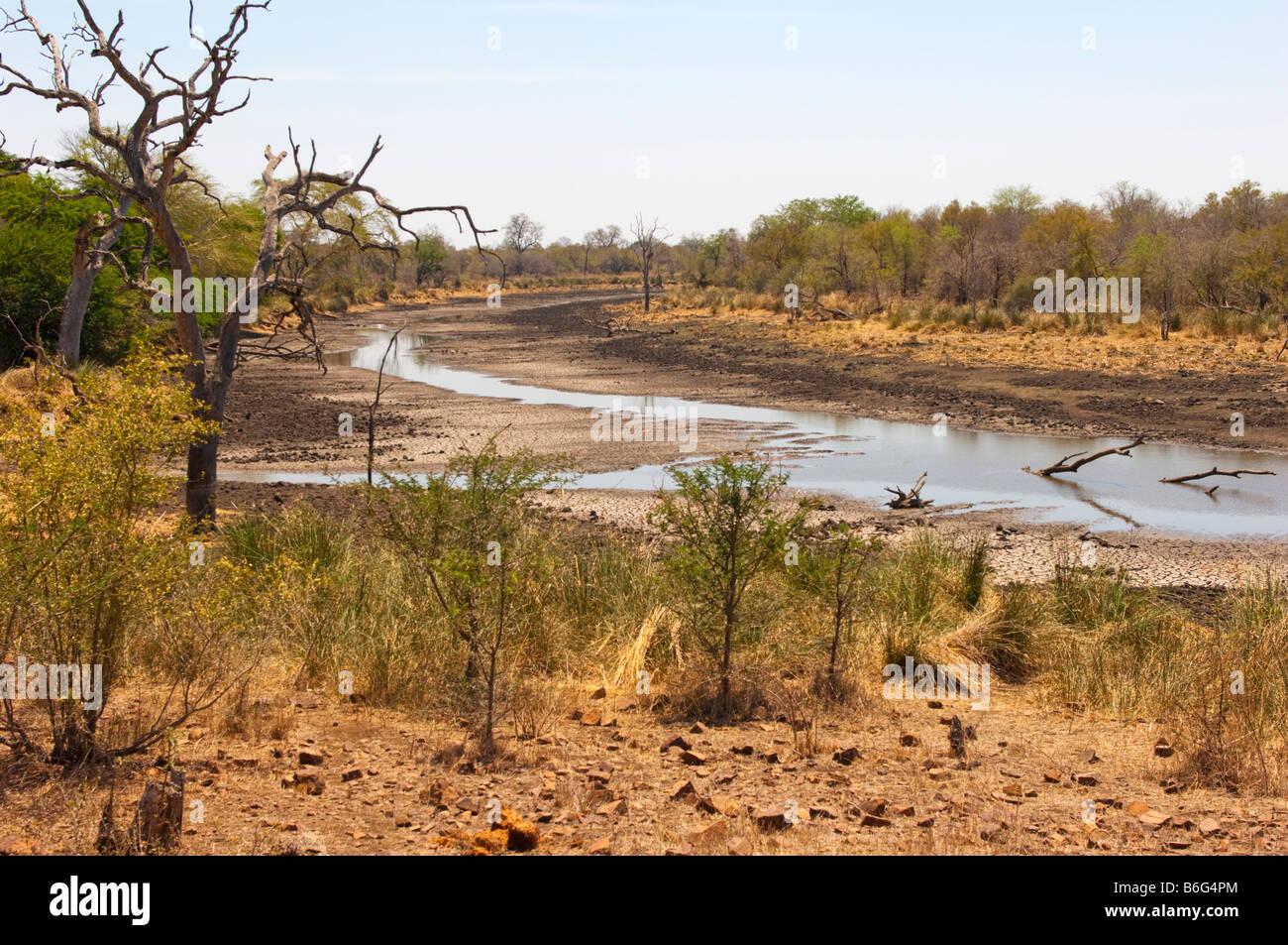 superb wonderful south-africa Bush bushland landscape ACACIA trees water waterhole ACACIATREE bush bushland wild - Stock Image
