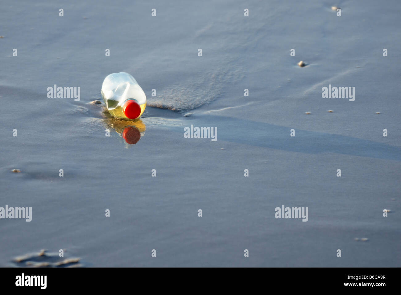 One plastic bottle detail abandoned lying in shallow sea water alone - Stock Image
