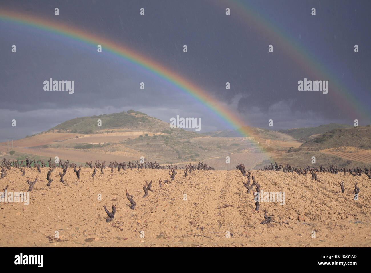 Rainbow in wine region of Rioja Stock Photo