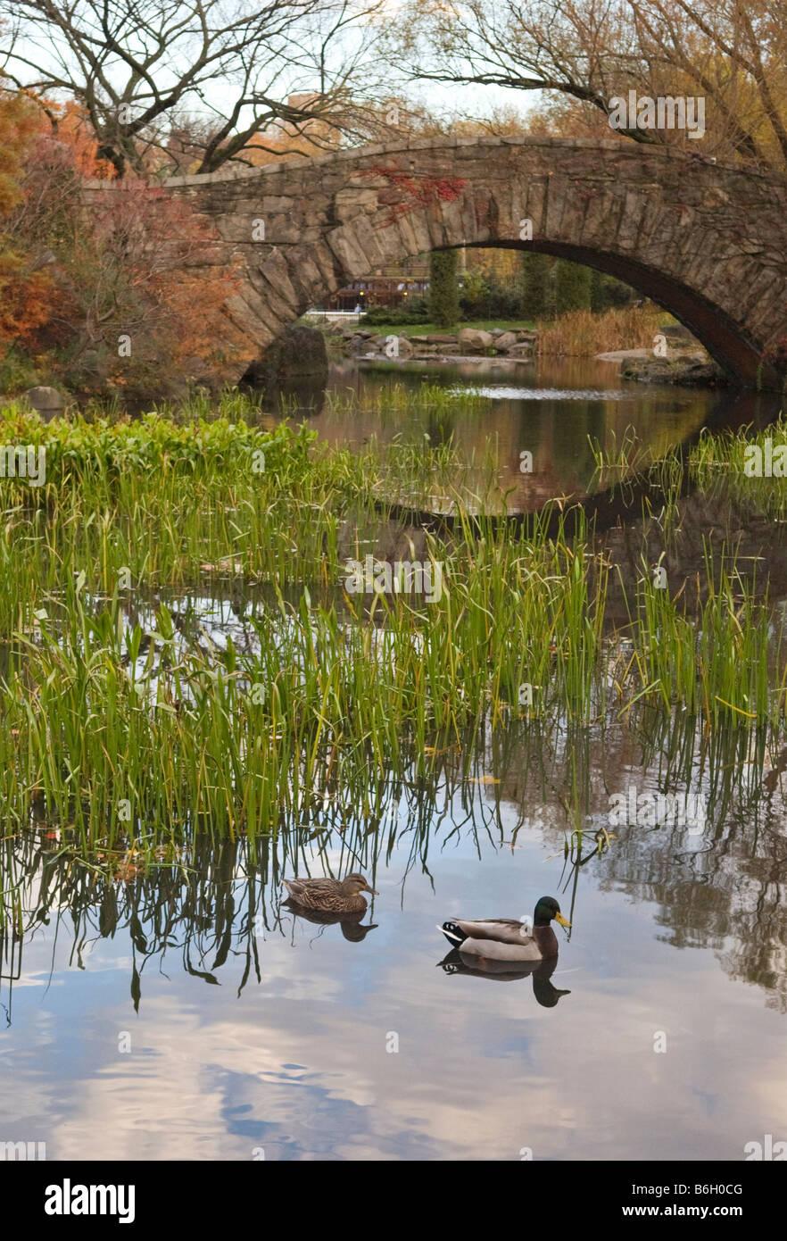 Gapstow Bridge in Central Park, New York City - Stock Image