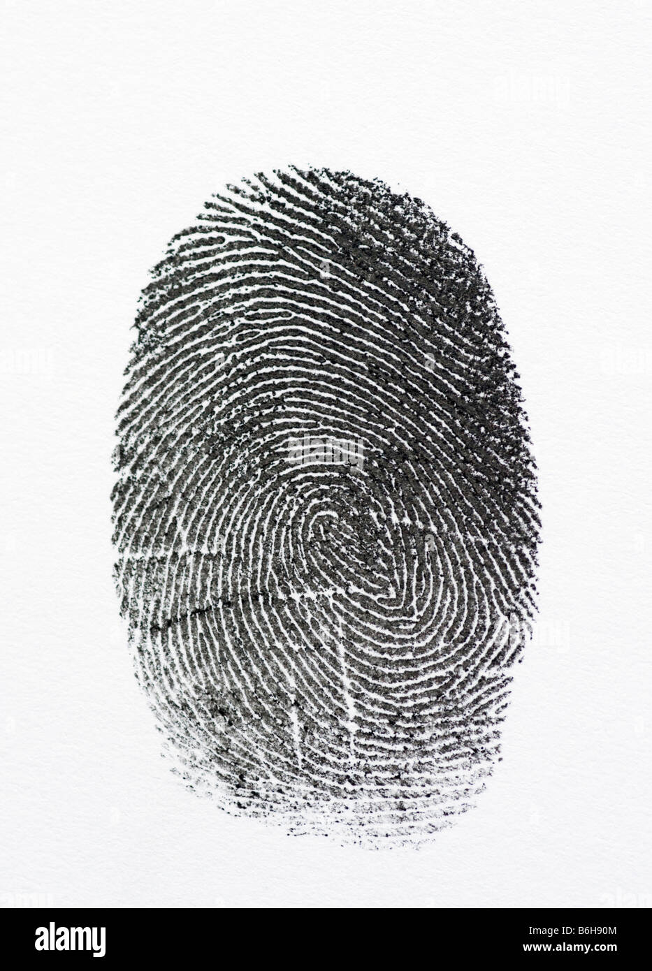 Fingerprint detail with a white background - Stock Image