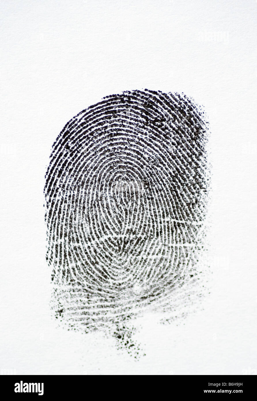 Fingerprints with a white background - Stock Image