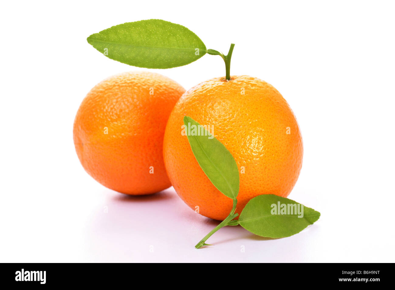 Juicy ornage fruit with leaves - Stock Image