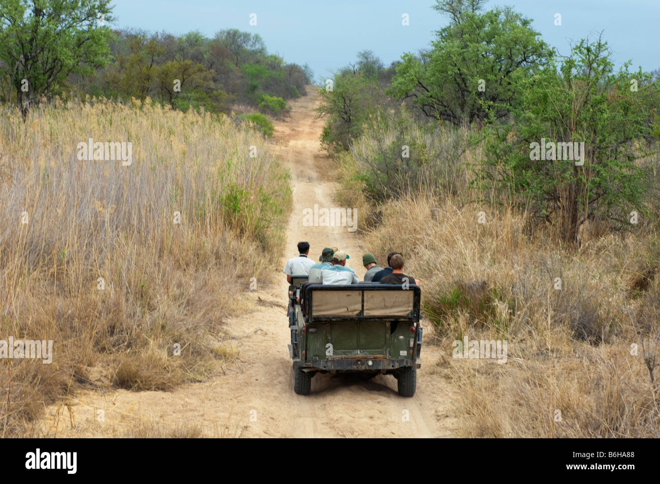 Game drive adventure South-Africa jeep vehicle people SAFARI car south-africa wild wilderness road way bush - Stock Image