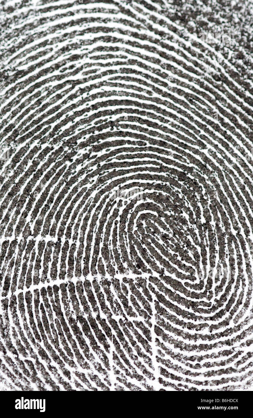 Fingerprint close up - Stock Image