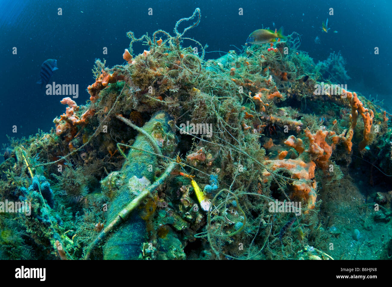 Garbage and debris fishing line and litter scattered along the bottom of Palm Beach County FL reefs and intracoastal - Stock Image