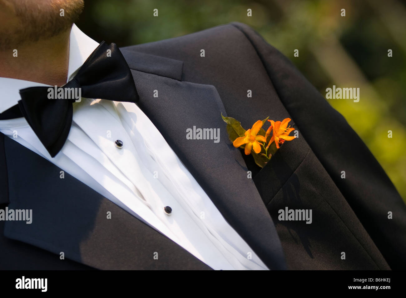 Tux - Stock Image