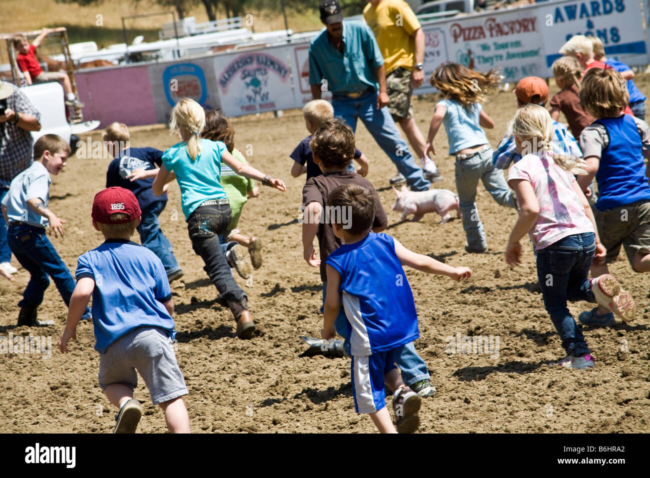 Kids taking part in a pig scramble at a rodeo held at Three Rivers, California Stock Photo